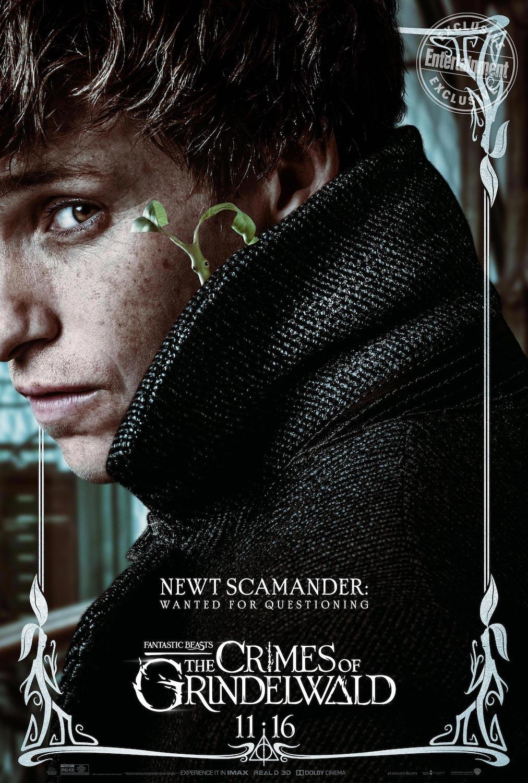 Newt Scamander en Animales Fantásticos: Los Crímenes de Grindelwald